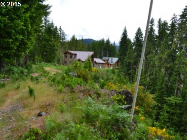 Lodgepole Ln, Cougar, WA 98616 (MLS #15421965) :: Cano Real Estate
