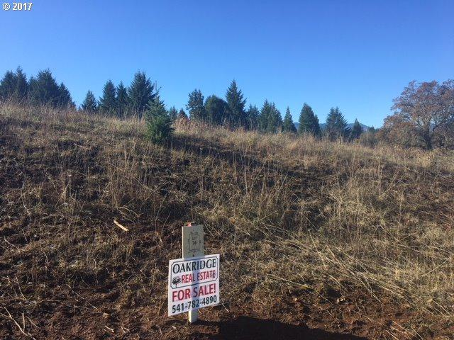 N Bugle Loop N #74, Oakridge, OR 97463 (MLS #17254815) :: The Liu Group