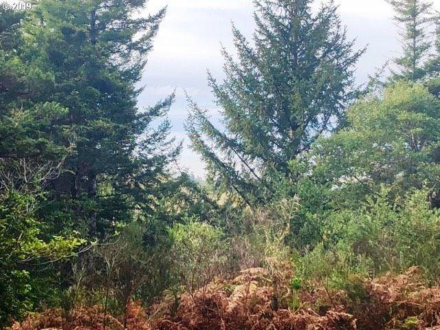 Dee Terrace, Port Orford, OR 97465 (MLS #18295836) :: Beach Loop Realty