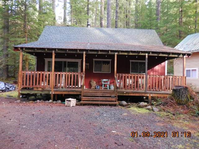 Cabin 141 Northwoods, Cougar, WA 98616 (MLS #21139836) :: Next Home Realty Connection