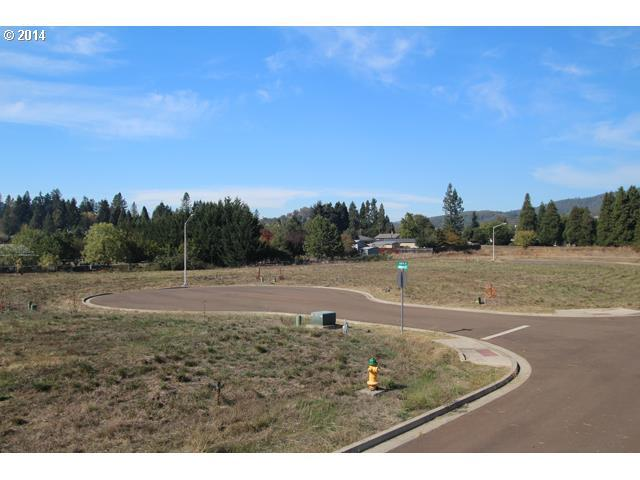 143 Teresa Ln #10, Winston, OR 97496 (MLS #14313686) :: Harpole Homes Oregon