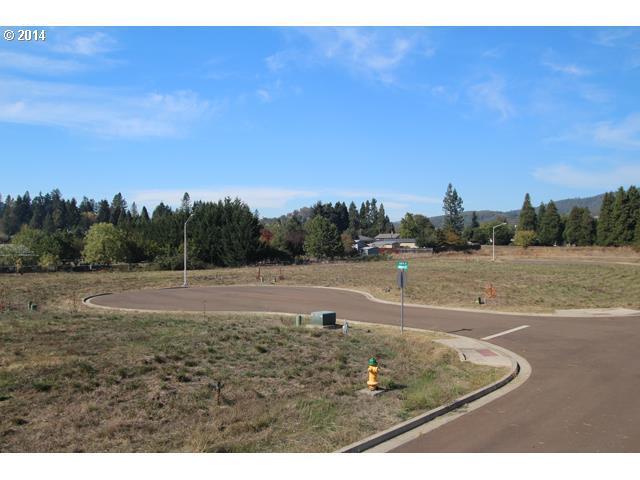 149 Teresa Ln #9, Winston, OR 97496 (MLS #14612531) :: Harpole Homes Oregon