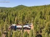 1339 Cinnamon Bear Road - Photo 1