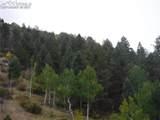 186 Alpine Drive - Photo 6
