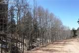 95 Navajo Trail - Photo 13