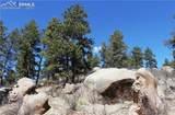 95 Navajo Trail - Photo 6