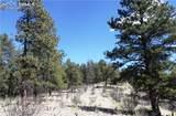 95 Navajo Trail - Photo 9