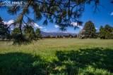 3305 Hill Circle - Photo 11