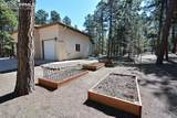 20125 Wissler Ranch Road - Photo 50