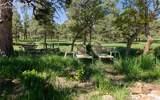 8728 Ponderosa Pine Drive - Photo 30