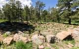 8728 Ponderosa Pine Drive - Photo 31