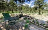 8728 Ponderosa Pine Drive - Photo 32