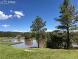 8728 Ponderosa Pine Drive - Photo 36