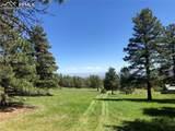 8728 Ponderosa Pine Drive - Photo 38