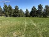 8728 Ponderosa Pine Drive - Photo 39