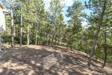 14645 Roller Coaster Road - Photo 34