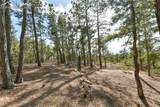 14645 Roller Coaster Road - Photo 38