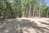 14645 Roller Coaster Road - Photo 39