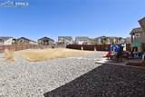 10857 Warm Sunshine Drive - Photo 29