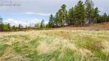 1205 Cottontail Trail - Photo 3