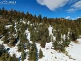 164 Palmer Trail - Photo 1