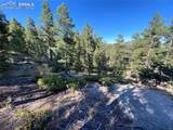 227 Waterfall Loop - Photo 10
