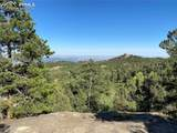227 Waterfall Loop - Photo 13