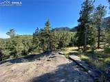 227 Waterfall Loop - Photo 14