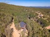 221 Potlatch Trail - Photo 34