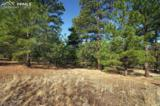 3825 Wavy Oak Drive - Photo 15