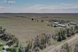 42910 County Road 29 - Photo 50