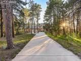 18440 Woodhaven Drive - Photo 3