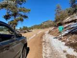 2611 Antelope Trail - Photo 30