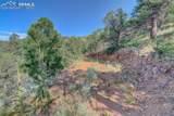 15770 Ridge Ride Point - Photo 6