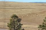 15015 Terra Ridge Circle - Photo 49