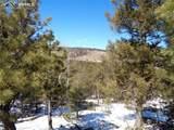 716 Pine Drive - Photo 18