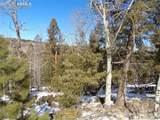 716 Pine Drive - Photo 22
