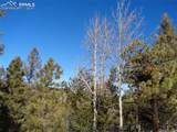 716 Pine Drive - Photo 24