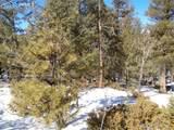 716 Pine Drive - Photo 3