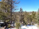 716 Pine Drive - Photo 5