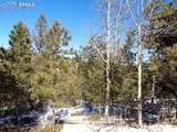 716 Pine Drive - Photo 9