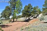 8965 County Road 1 - Photo 5