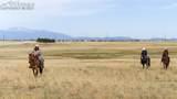 8150 Cowboy Ranch View - Photo 1