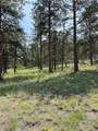 69 Osage Trail - Photo 26