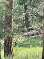 69 Osage Trail - Photo 27