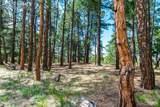 19125 Hilltop Pines Path - Photo 1