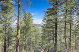 13000 Powhatan Trail - Photo 10
