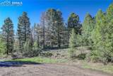 13000 Powhatan Trail - Photo 9