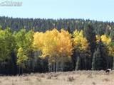 TBD Rhyolite Mountain Mesa Road - Photo 1