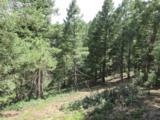 2450 Elk Park Road - Photo 11